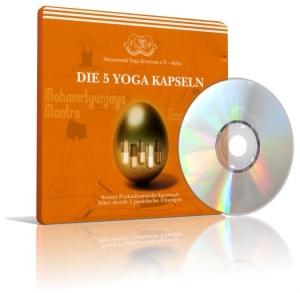 Die 5 Yoga Kapseln von Swami Prakashananda (CD)
