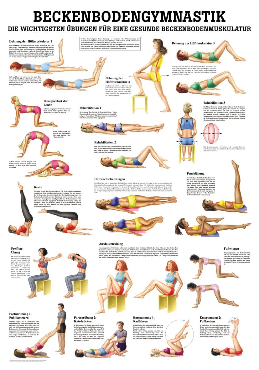 Beckenbodengymnastik im YOGISHOP kaufen | Yoga, Yogamatten & Yoga ...