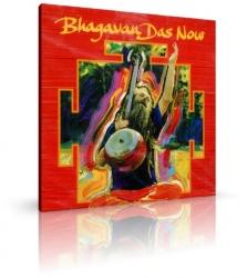 Bhagavan Das Now von Karuna (CD)