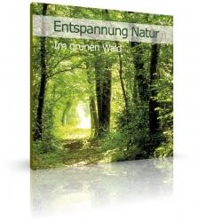 Entspannung Natur - Im grünen Wald von Ample (CD)