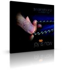 Joy is Now von Guru Ganesha & Snatam Kaur  (CD)
