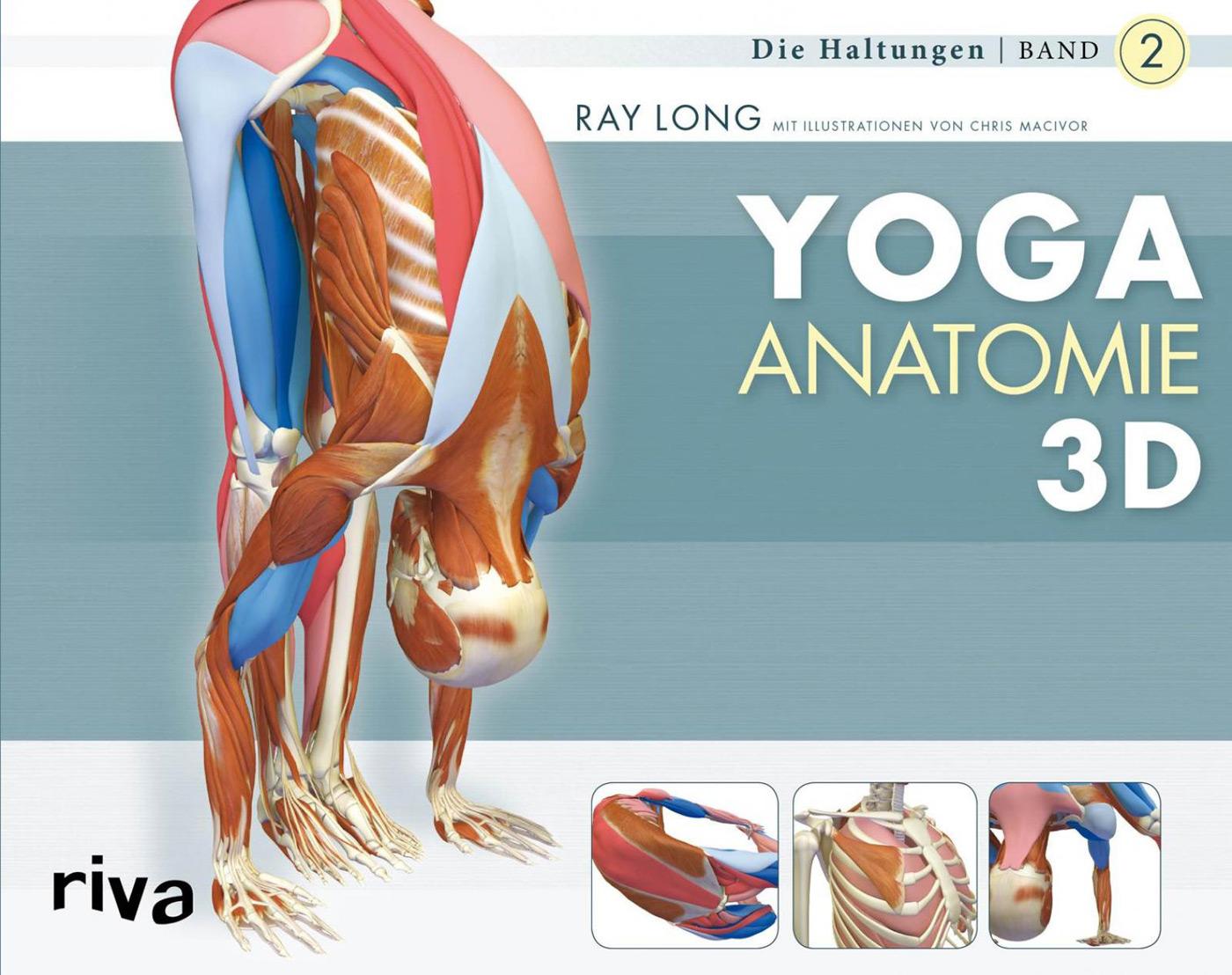 Yoga Anatomie 3D, Band 2 von Ray Long im YOGISHOP kaufen | Yoga ...
