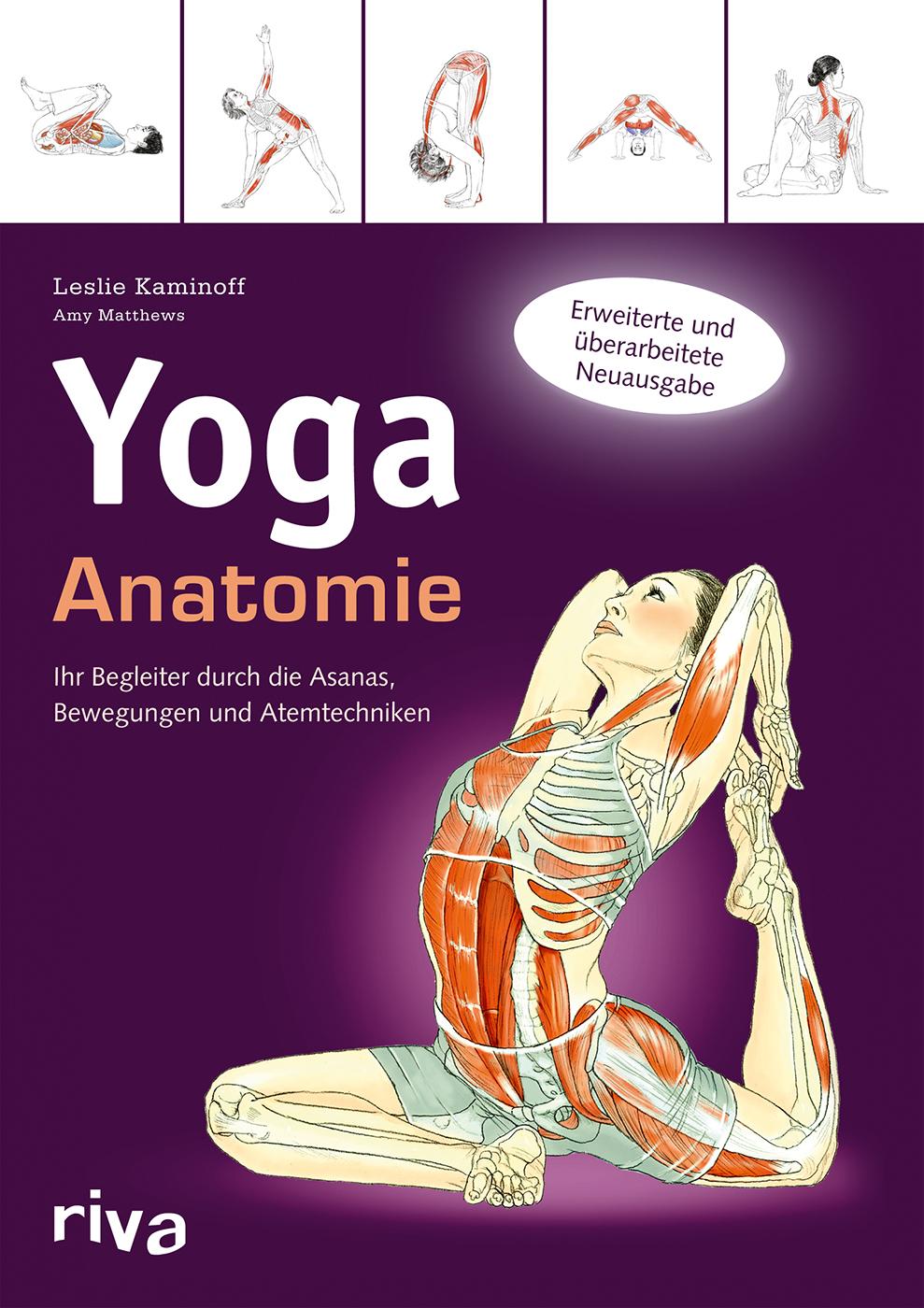 Yoga Anatomie von Leslie Kaminoff